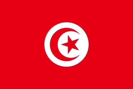 Embajada de la República Tunecina Concurrente desde Buenos Aires