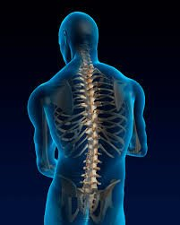 Chiropractic & Physical medicine