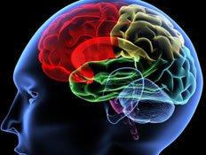 חדר כושר מוחי - משחקי חשיבה ומיומנויות 21