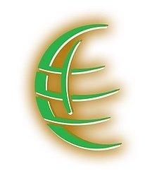 Advanging World Enterprises