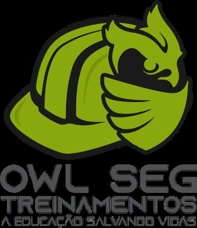 Owl Seg Treinamentos