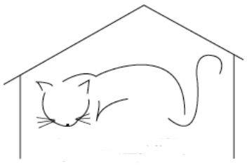 The Cat House Feline Sanctuary, Inc.
