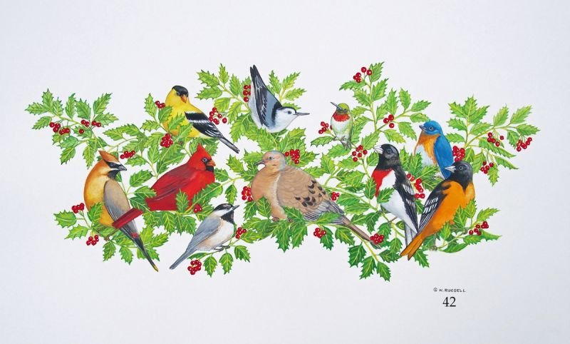 Birds on Boughs