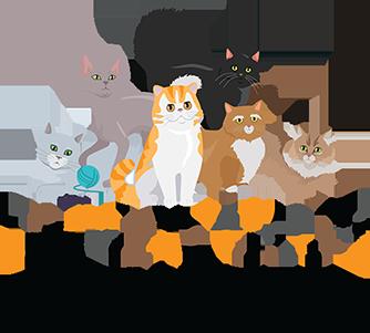 Coachella Valley Cat Club
