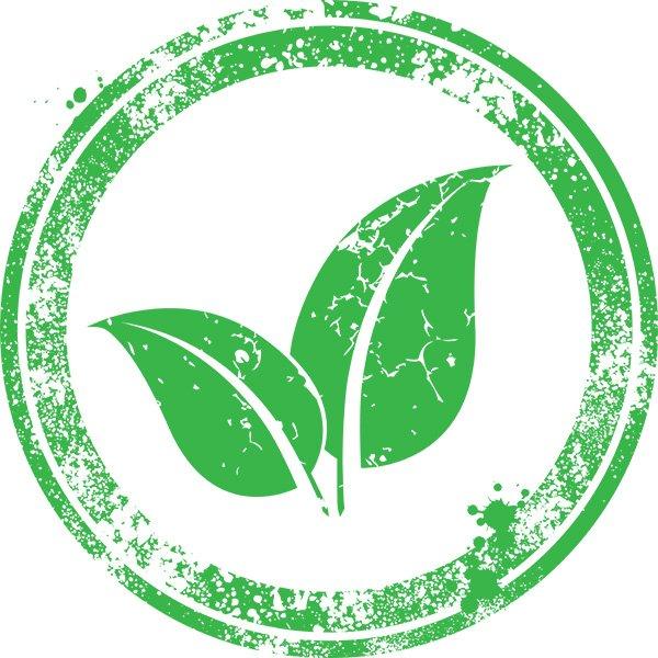 Digital Ecosystem, Sustainability, Risk and Management