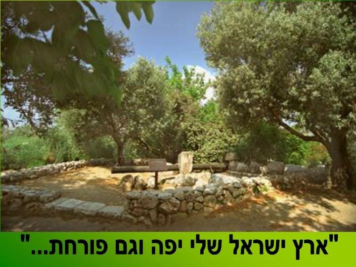 תפארתה של ארץ ישראל