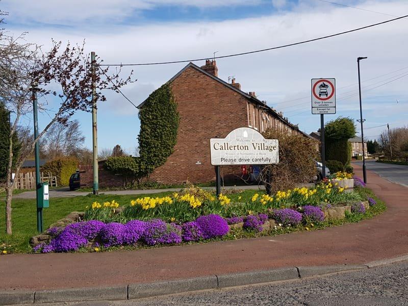2021: Biodiversity Journey around Bank Foot, Callerton and Woolsington