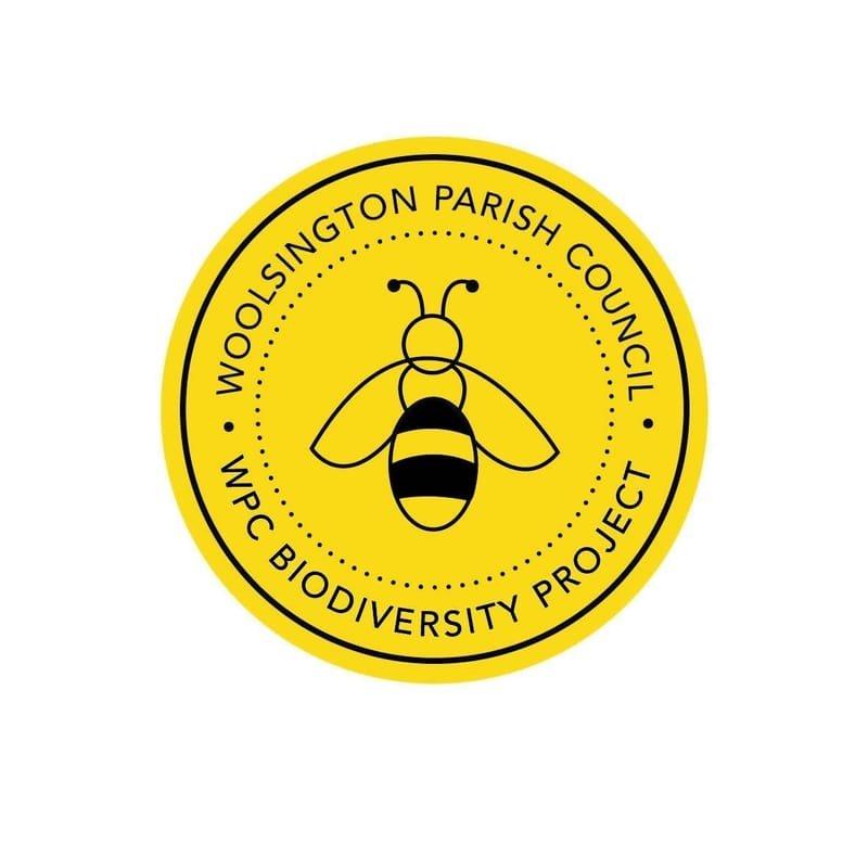 An Introduction to Woolsington Parish Council Biodiversity Project