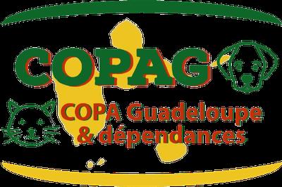 Copa Guadeloupe et dépendances