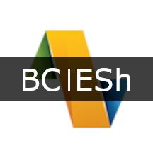 BUSINESS CENTRAL - E-SHIPMENT