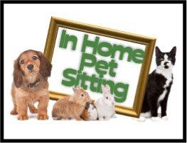 In-Home Pet Sitting in Berkley MA