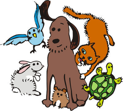 Tierarztpraxis Sickinger