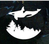 Dirt Orcas