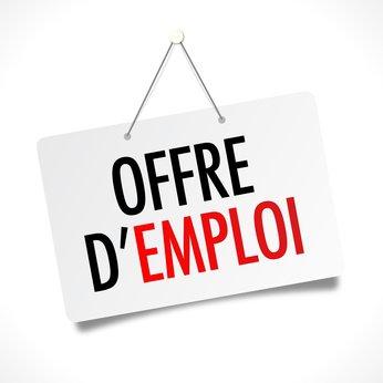 S'insérer/se réinsérer sur le marché du travail